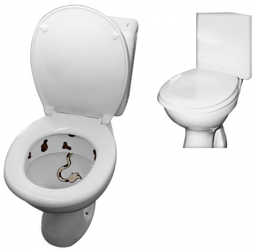 Handige en degelijke zelfsluitende wc bril